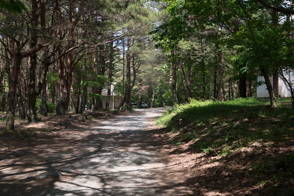 本栖湖キャンプ場広大な敷地1