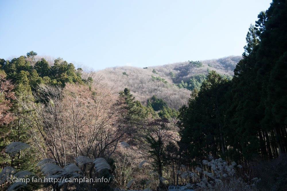 椿荘オートキャンプ場